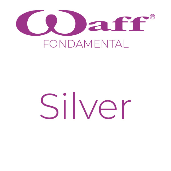 formation_waff-fondamental-silver
